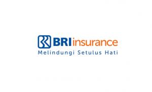 Lowongan IT BRI Asuransi Indonesia